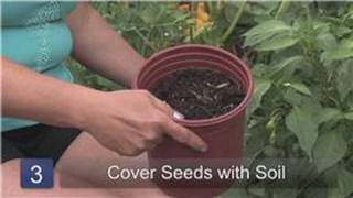 Gardening & Plant Care Tips : How to Plant Hot Peppers