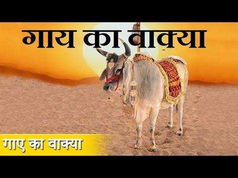 गाय का वाक़या || Waqya || Karishma E Khwaja Gareeb Nawaz || Sonic Qawwali || Popular waqiya