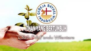 Iman Yang Bertumbuh - Pdt.Pandu Wilantara [062914 AUDIO KOTBAH]