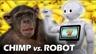 Chimp vs. Robot Magic