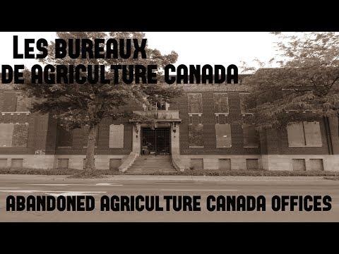 Urbex: Les Bureaux de Agriculture Canada / Abandoned Agriculture Canada Offices