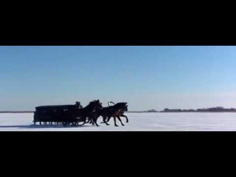 Onegin- Pelicula Británica- (Basada en la obra del escritor Ruso Pushkin)  / 1999