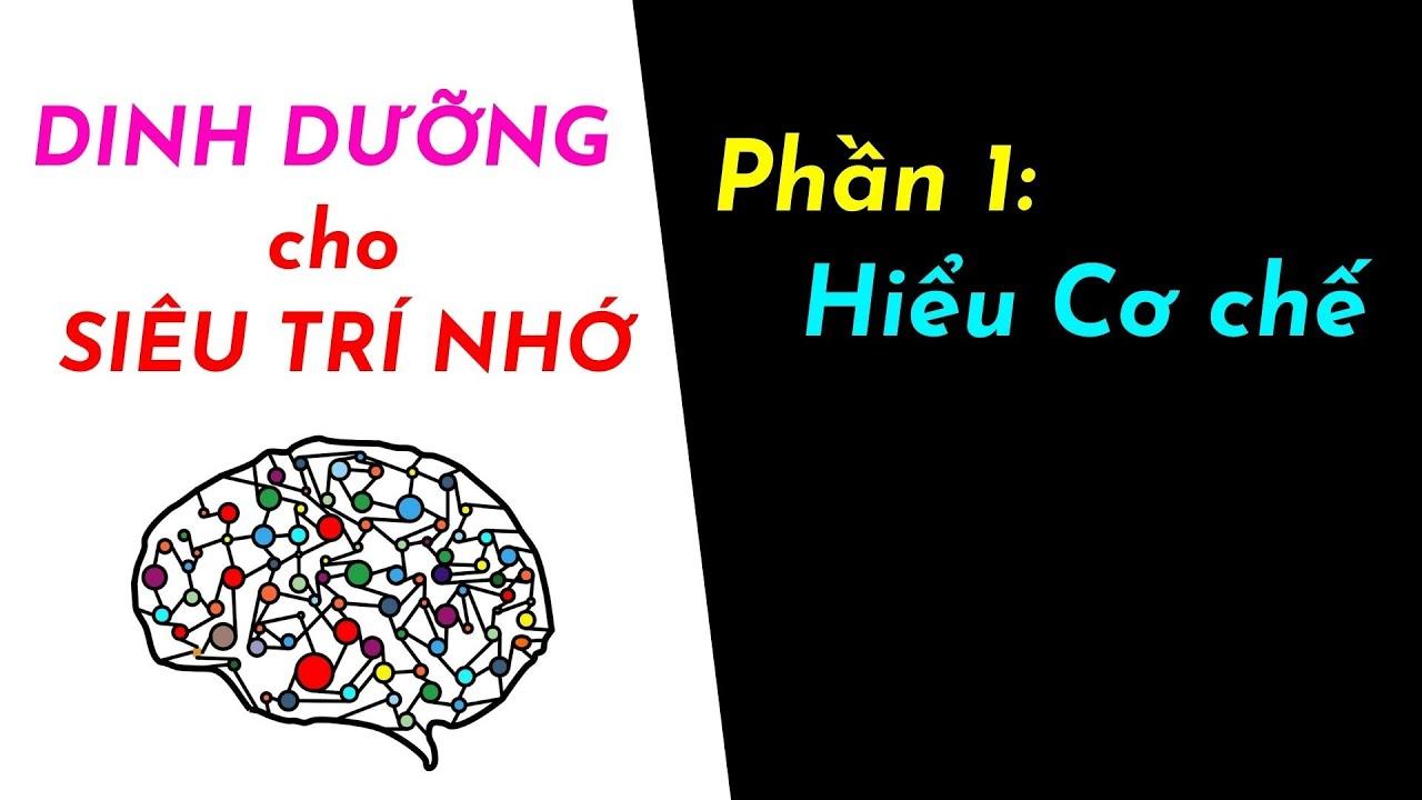 Dinh dưỡng cho não - P1 Cơ chế vận hành Siêu trí nhớ