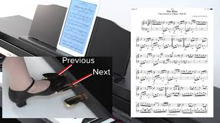 """""""Using the Page Turn Function"""" Roland GP / LX / HP / DP series #09"""