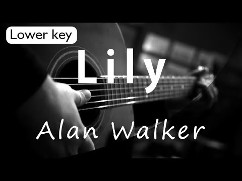 Lily - Alan Walker Lower Key ( Acoustic Karaoke )