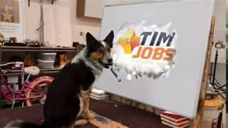 【MP4】あなたの会社名やロゴをかわいい犬がアートボードで宣伝します。A