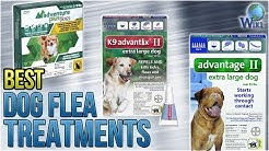 9 Best Dog Flea Treatments 2018