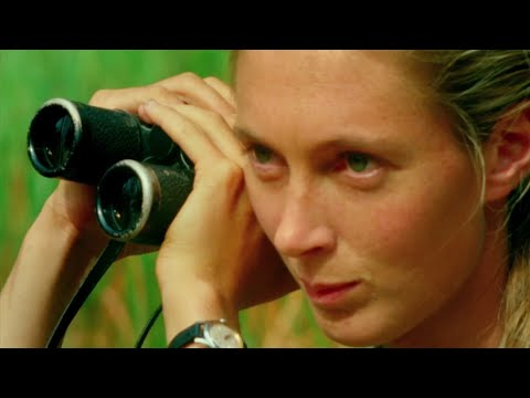 New doc 'JANE' surprised even Jane Goodall herself
