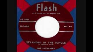 The Jayhawks - Stranded In The Jungle