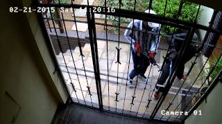 Attempted Burglary on my parent