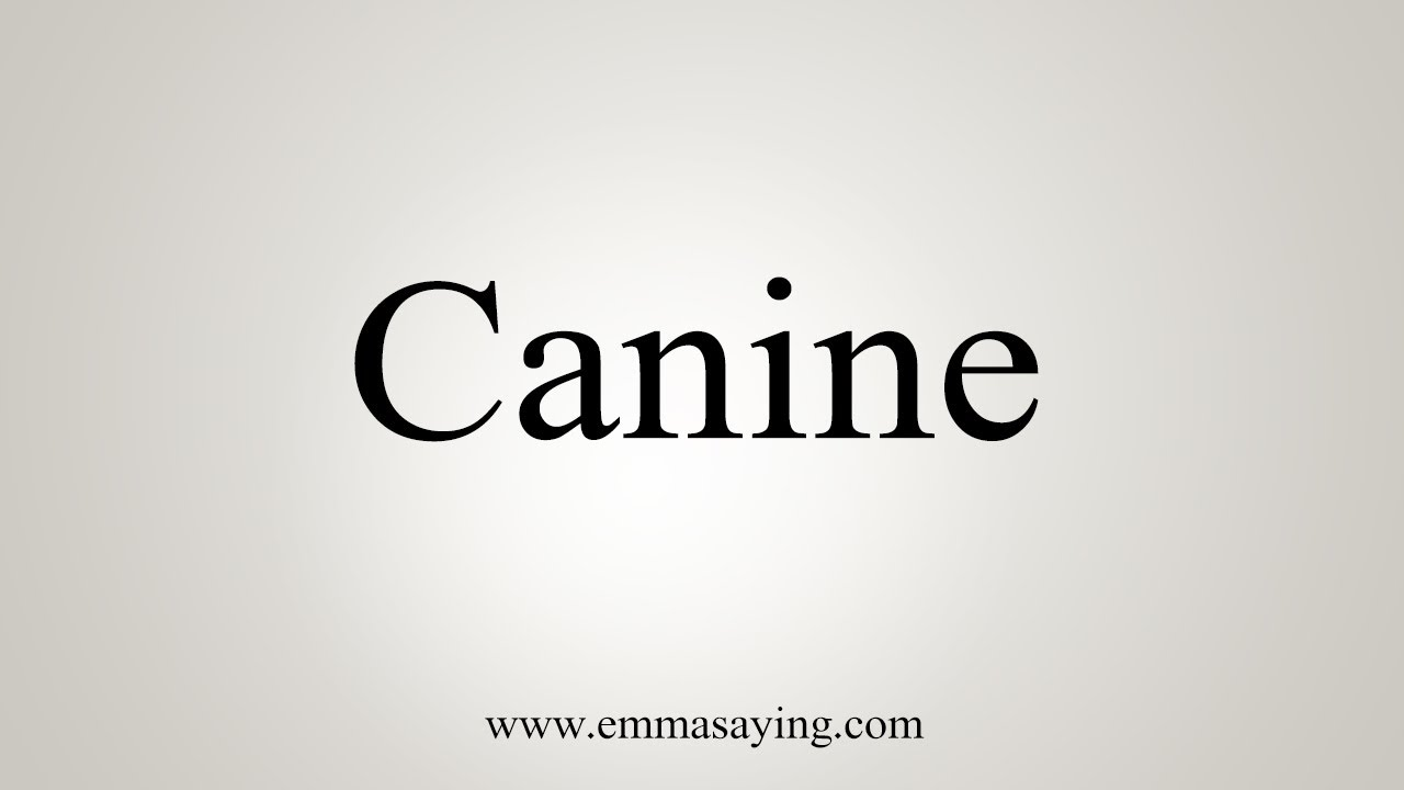 How To Say Canine