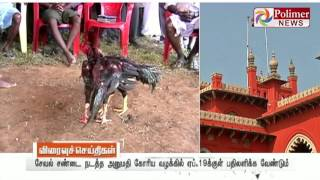 HC orders Kovai Hen fight Association to respond on the petition to ban | Polimer News