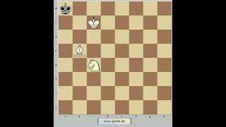 Шахматы. Мат конем и слоном