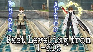 Super Power Leveling Fŗom 1-205 Toram Online