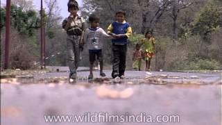 Village kids spend leisure time, Chhoti Haldwani, Uttarakhand