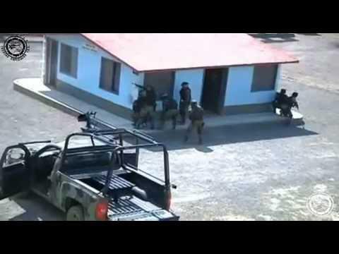 Fuerzas Especiales Estructura y Entrenamiento Basico