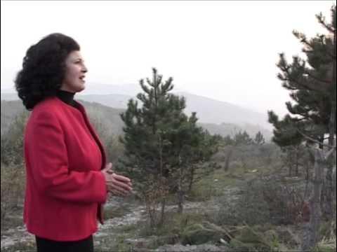 Irina Loghin - Ce folos de bogatii si de averi