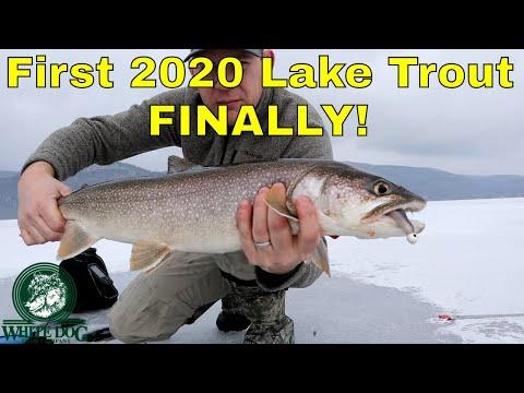 Lake George Lake Trout 2020 - FINALLY! - Ice Fishing