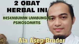 2 OBAT HERBAL GERD, ASLAM, PSIKOSOMATIS|ASEP BRUDER