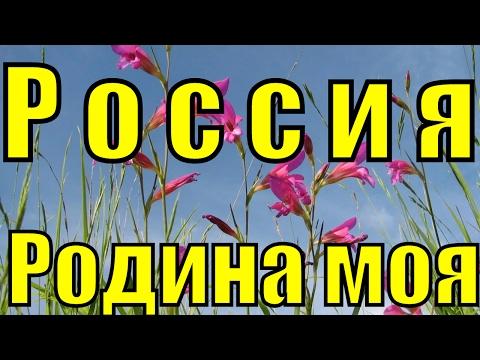 Николай Рубцов Привет,Россия! Читает Юдин Александр