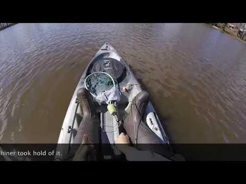 Fishing Southern Maryland: Allen's Pond (Eden, MD)