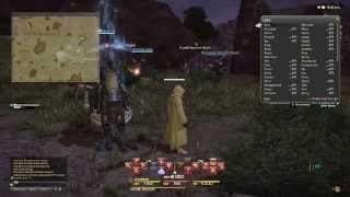 Final Fantasy XIV: A Realm Reborn - Gameplay PS4
