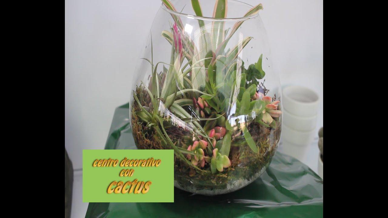 Como hacer centro de mesa con cactus y musgo youtube - Como construir un terrario ...