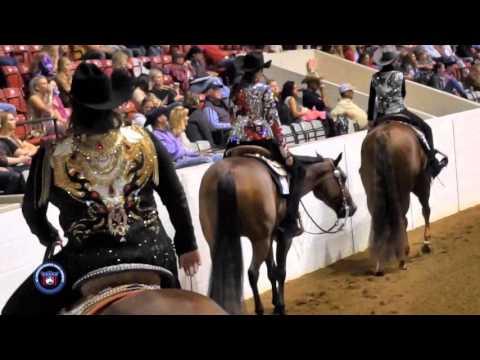 2015 AQHA All-American Quarter Horse Congress Non-Pro Western Pleasure Stakes