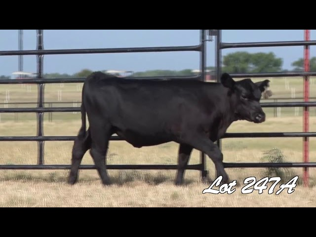Pollard Farms Lot 247A