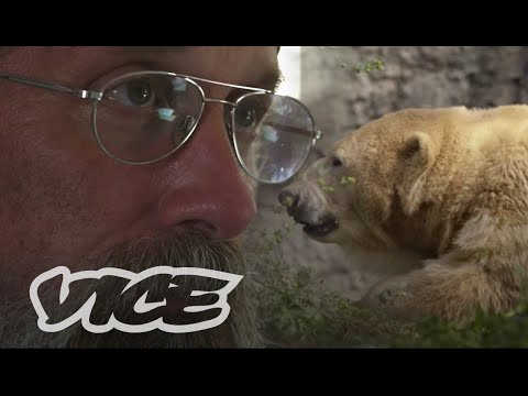 Polar Bear Man Returns to the Arctic: Vice Reports (Trailer)
