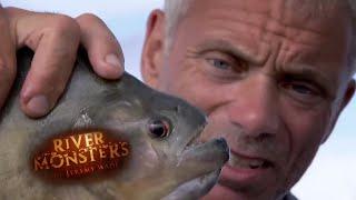 Piranhas: A Misunderstood Monster - River Monsters
