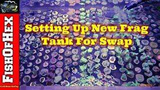 Frag Swap Prep Part 2 of 3 | New Frag Tank Setup & Cutting More Coral