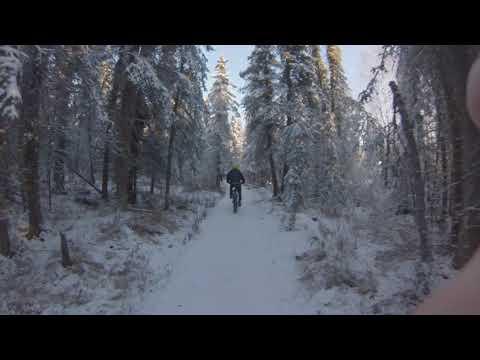 SnowBiking in Anchorage