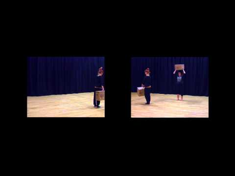 THPF 334 Digital Performance Practice