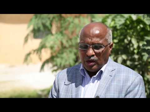 Somaliland holds Upper House elections