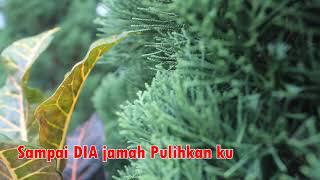 Lirik You Raise Me Up  Versi Bahasa Indonesia