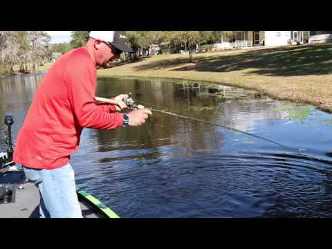 Chad Grigsby With A Pig Of A Largemouth