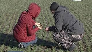 """""""Вести. Дон - События недели"""" 13.01.18"""
