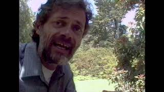 Terence McKenna - An Anthill Is A Mind