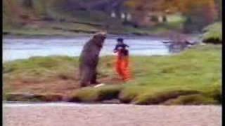bear attacked by man