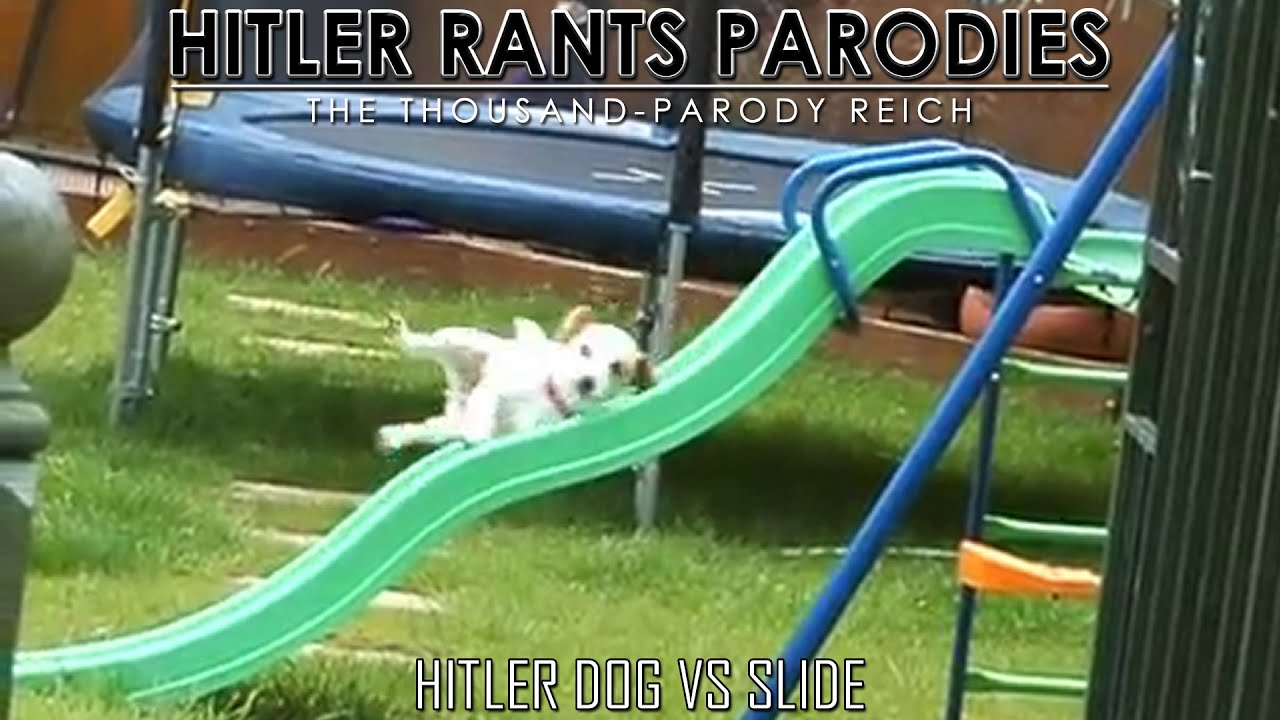 Hitler Dog Vs Slide