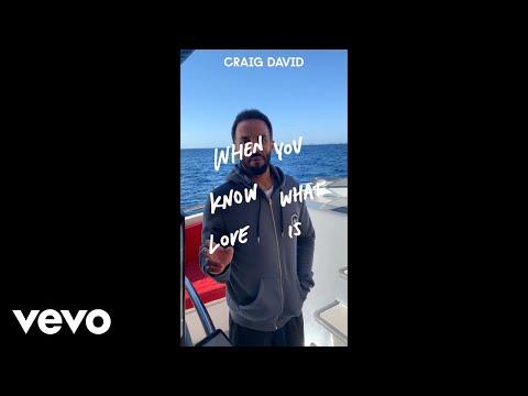 Смотреть клип Craig David - When You Know What Love Is