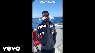 Craig David - When You Know What Love Is (Vertical Video) Video