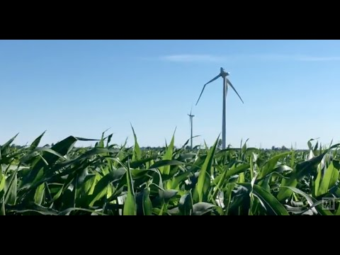 Broken wind turbine in Nextera Energy\'s Tuscola Bay Wind Farm - YouTube