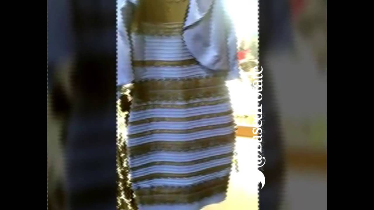 The dress explained - Is The Dress Black Blue Or White Gold Vine Explained