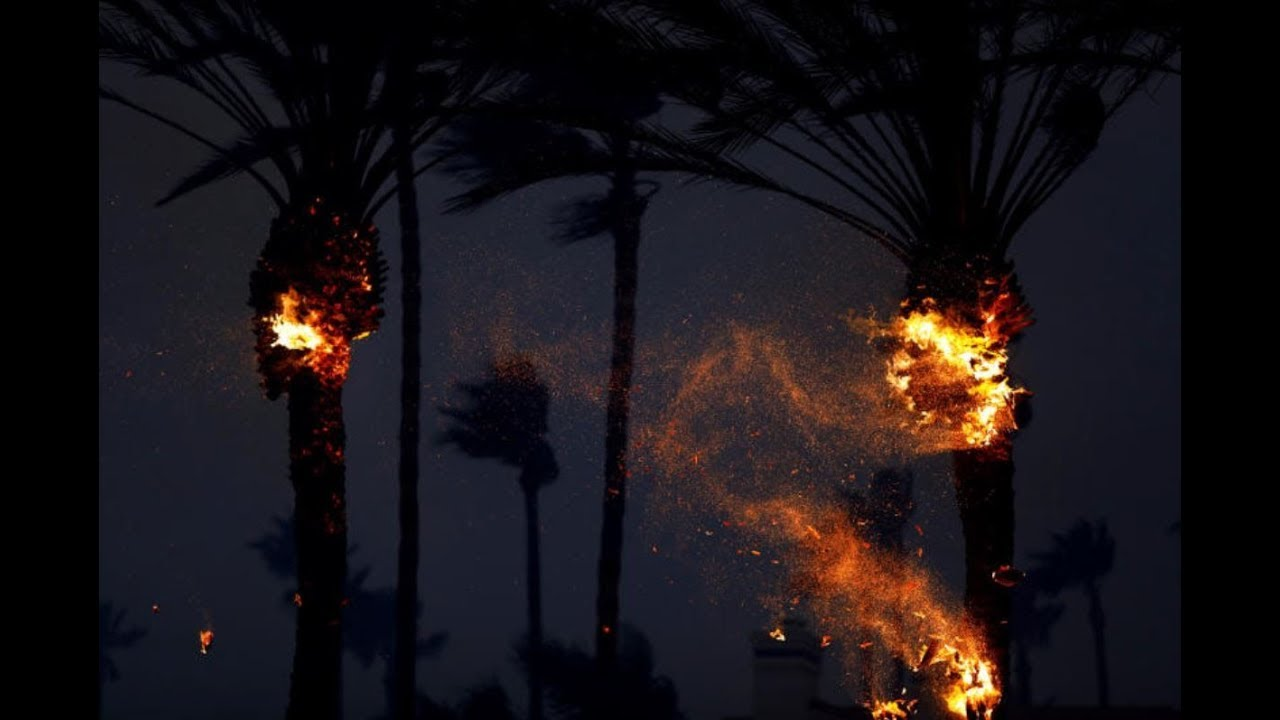 Five dead in California wildfire