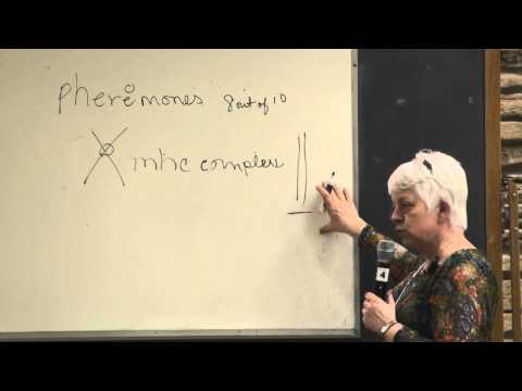 The Bio-Chemistry of Sex Part 2 - Vicky Thorn