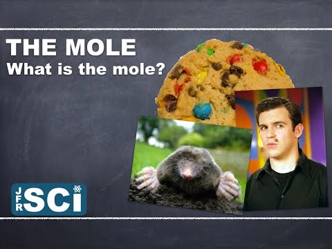 The Mole: What Is The Mole?