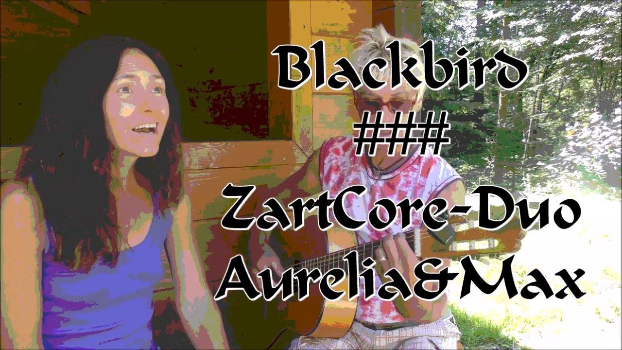 Blackbird ZartCore Duo AureliaMax T M Lennon McCartney