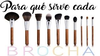 PARA QUÉ SIRVE CADA BROCHA: Manejo y limpieza de pincelería de maquillaje